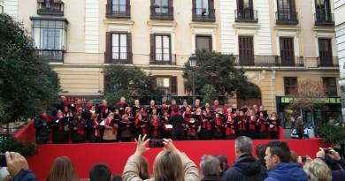 Concierto en Plaza de Pontejos